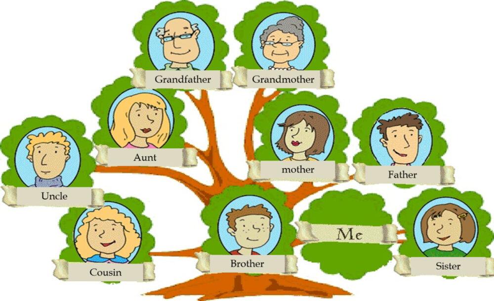 ТОП-20 программ и сервисов для построения родового дерева